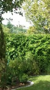 Garten mit Blick auf die Altenburg